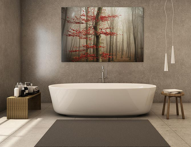 What Is Feng Shui - Bathroom