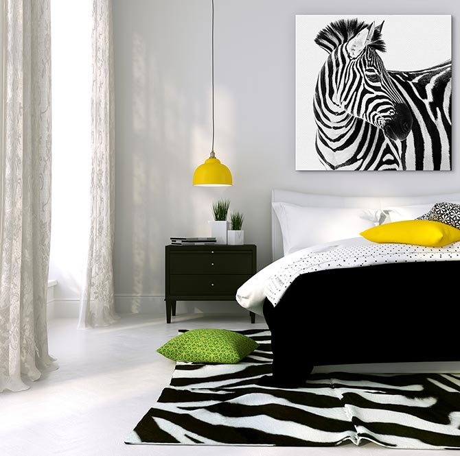 Zebra Rug Interior Design: What Is Interior Design? A Rookie's Guide