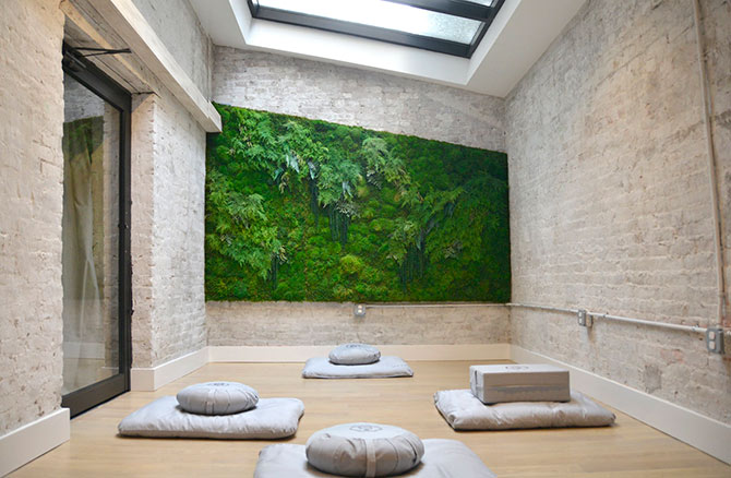 meditation room vertical garden