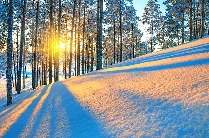 自然和日落摄影