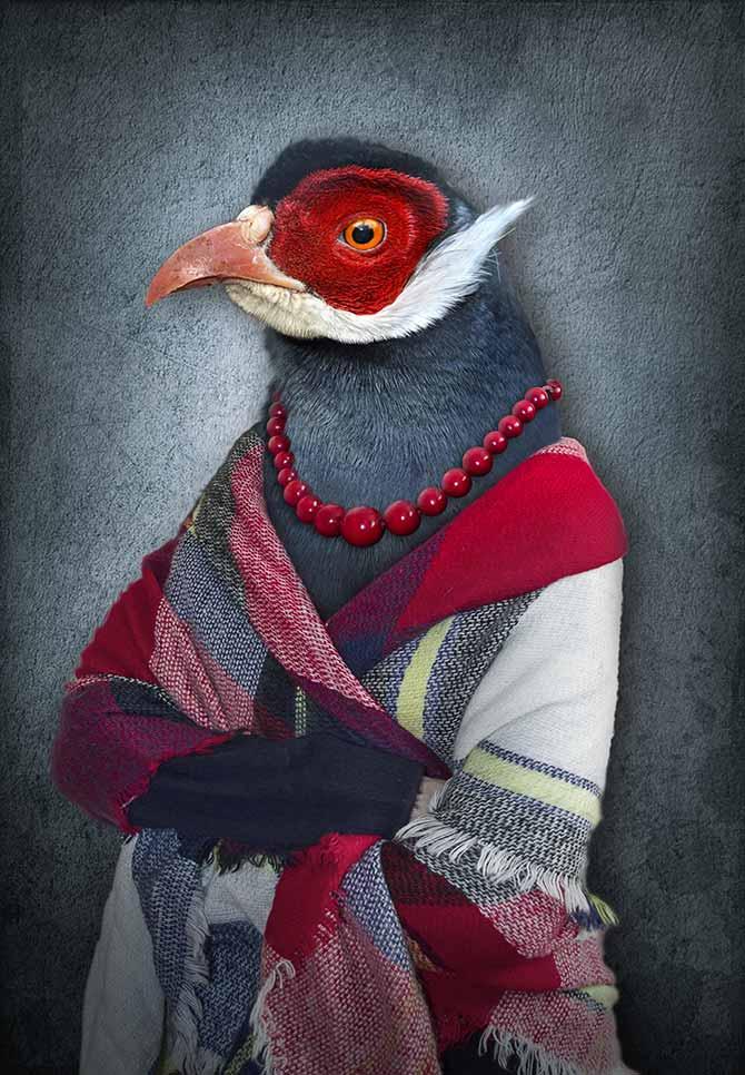 bird fantasy artwork