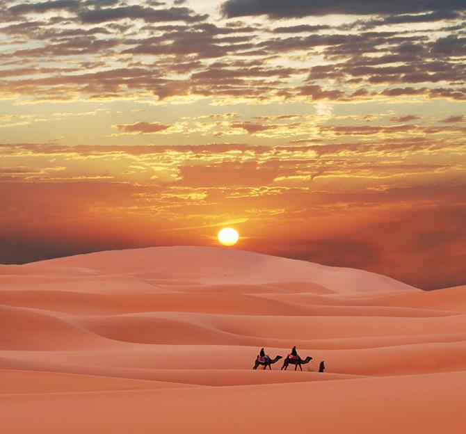 amazing adventures in the sahara