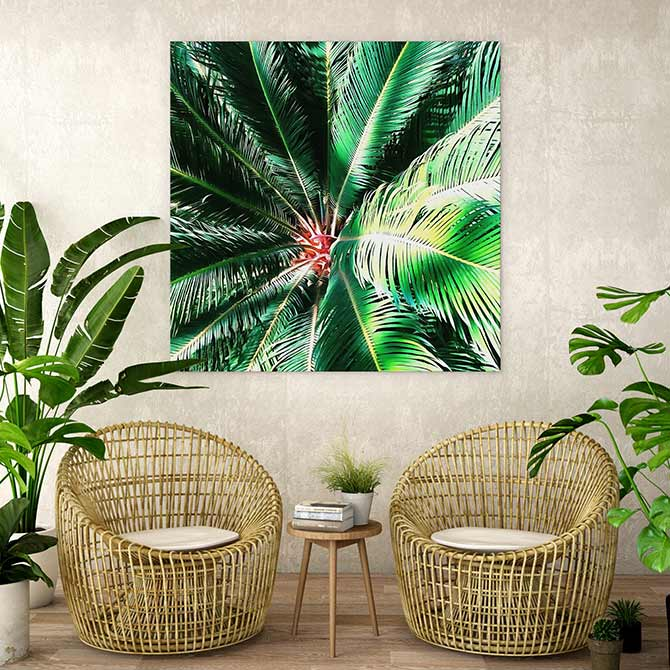 decor and design featuring indoor plants