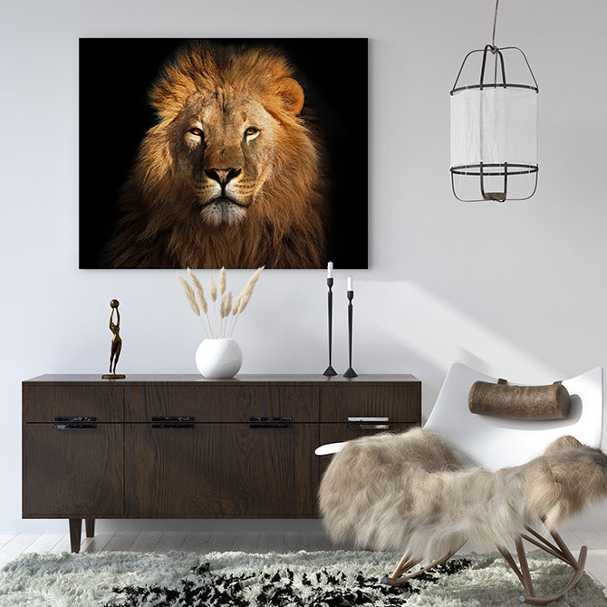 photographic art of a lion