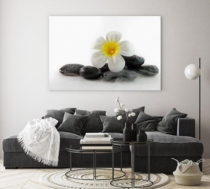 frangipani zen pictures