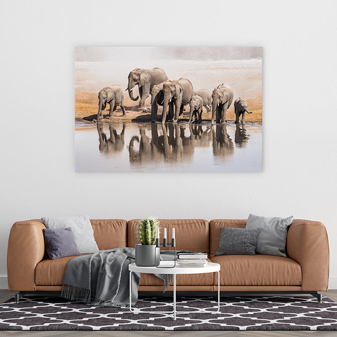elephant wildlife art