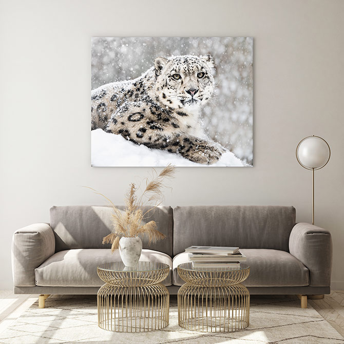 furry wildlife art