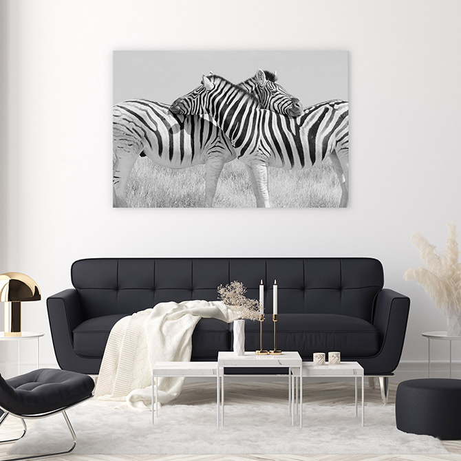 zebra wildlife art