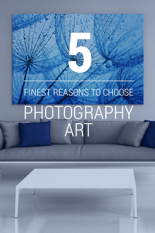 Five Finest Reasons To Choose Photography Art