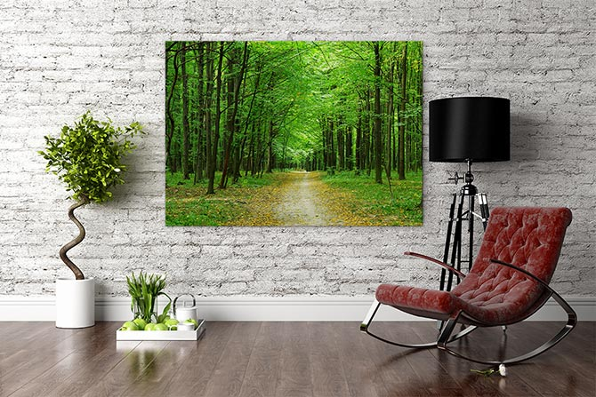 Interior Design Trends nature photography