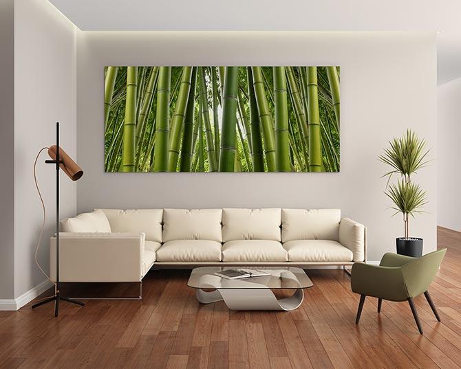 Feng Shui Tips - Bamboo