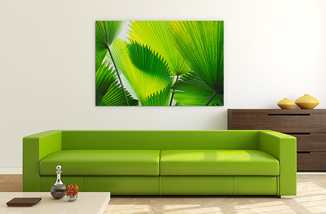 Pantone Colour Of The Year - Frond