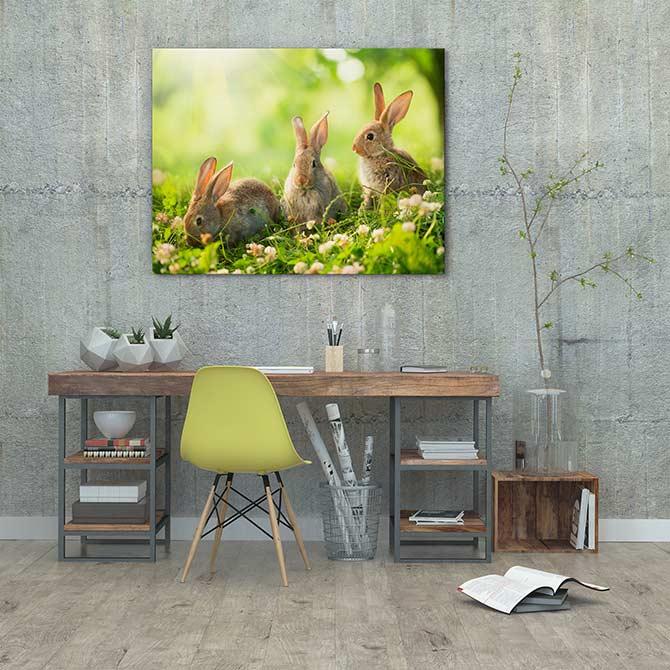 Easter art - Three cute bunnies in a sunny field