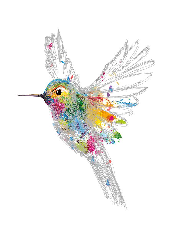 Popular prints of birds
