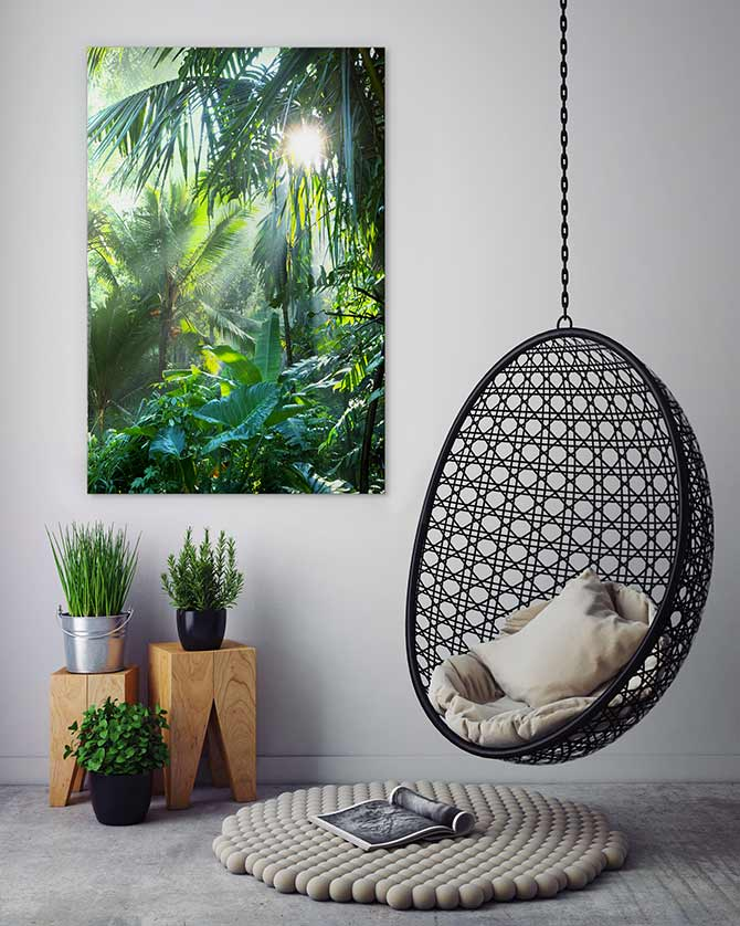 meditation room plants