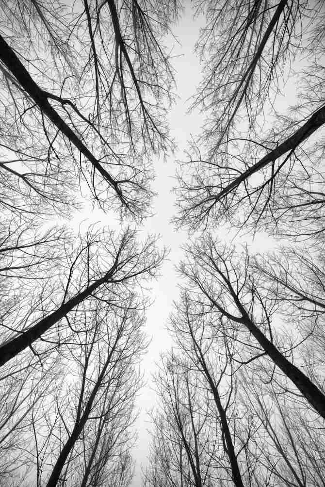 minimalist photography in black and white